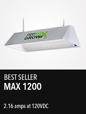 Max 1200