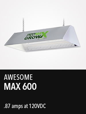 Max 600